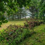 4 woodland h