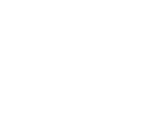 Full Logo White